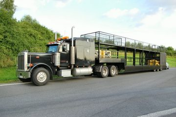 Paradetruck MT-4 Bild 1